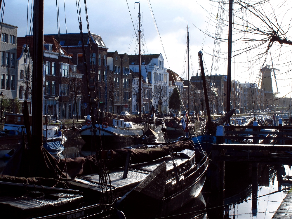 Boats docked at Aelbrechtskolk canal in Delfshaven