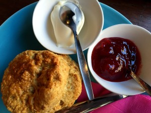 Urban Bakery Rotterdam scone cream and jam