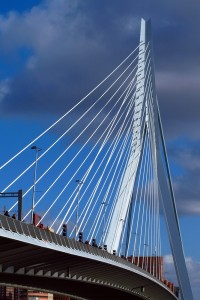 Erasmus Bridge Rotterdam pylon