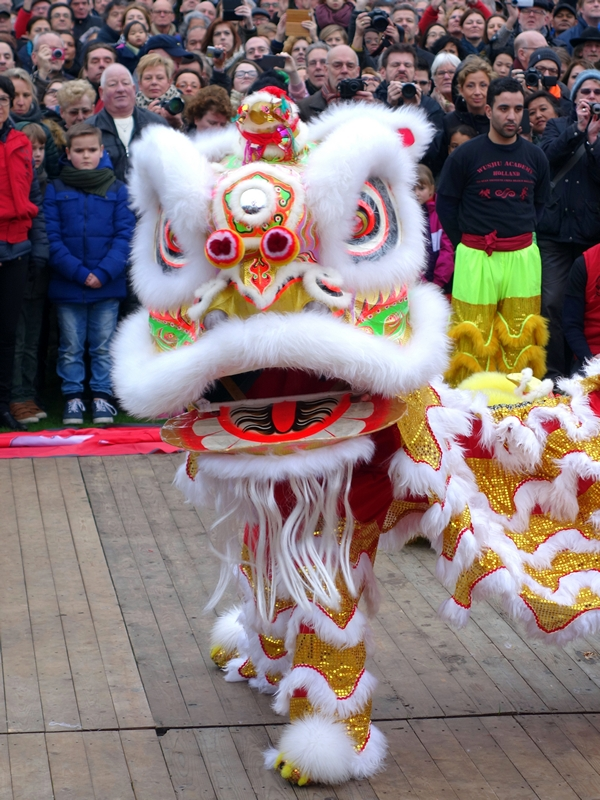 Tradional Lion Dance Chinese New Year